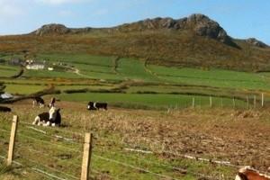 Pembrokeshire coast walk: day 5