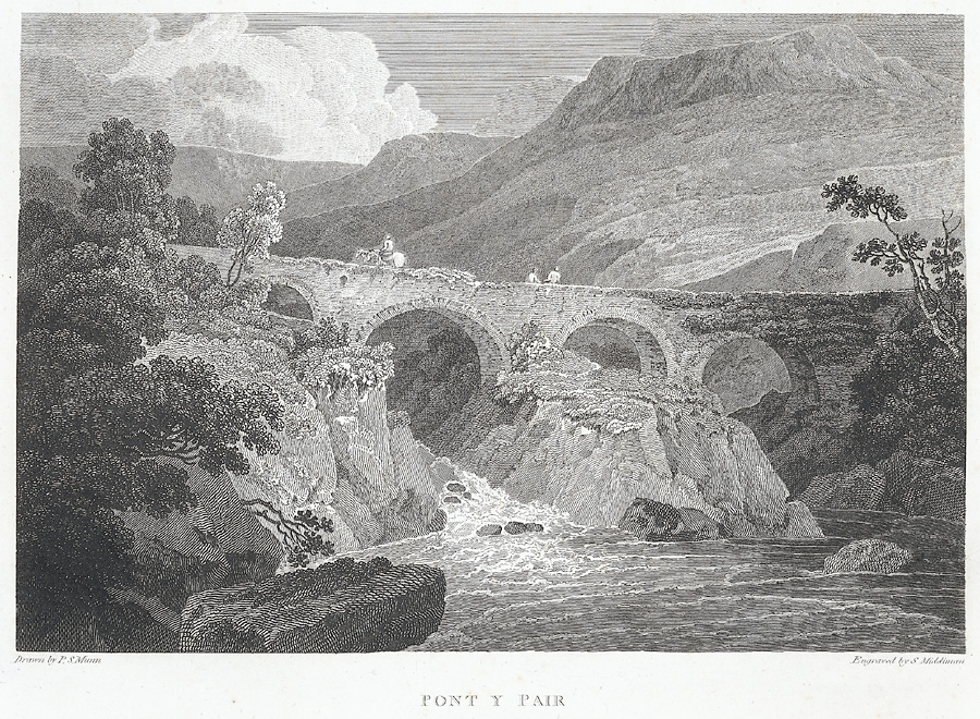 Cotman Pont-y-Pair