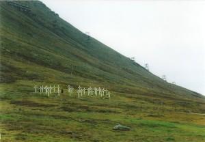 Spanish flu graveyard, Longyearbyen
