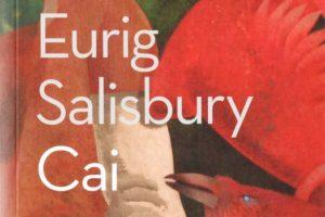 Ymchwil fel celfyddyd peryglus: 'Cai' gan Eurig Salisbury