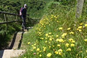 Gwynedd Coast Path, day 12