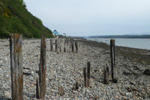 Anglesey Coast Path, day 12